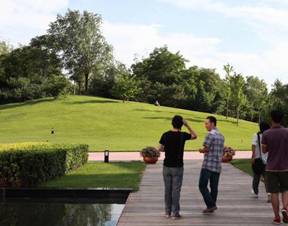 马奈cao地国际俱乐部 绿化
