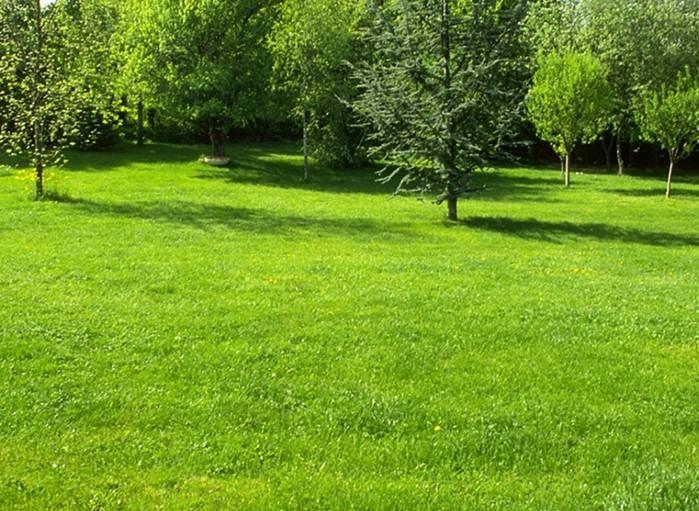 园林万博max3.0